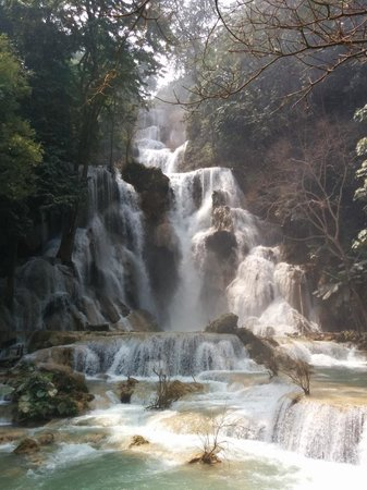 Aussie Sports Bar and Guesthouse: Kuang Si Falls ... one of the great Luang Prabang attractions.