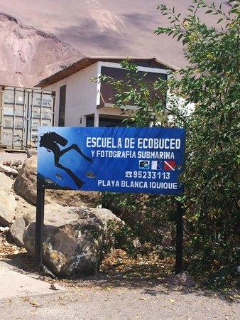 Buceo Iquique