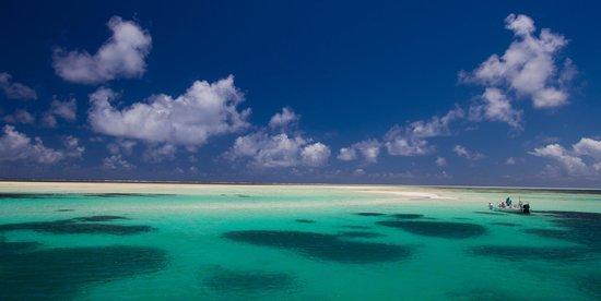 Alphonse Island 7