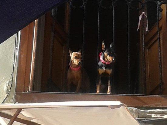 Puebla Vieja de Laredo: balcón en puebla vieja