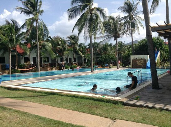 Dolphin Bay Resort : Swimming Pool
