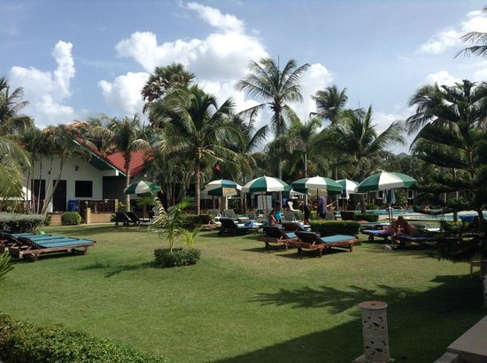 Dolphin Bay Resort : Loungers by the pool