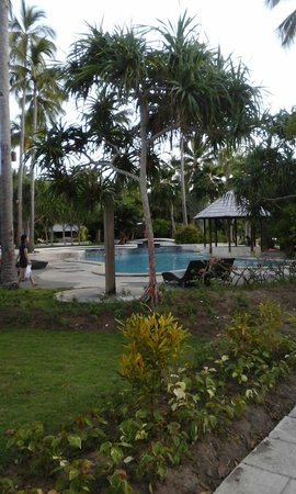 Dos Palmas Island Resort & Spa: Pool view