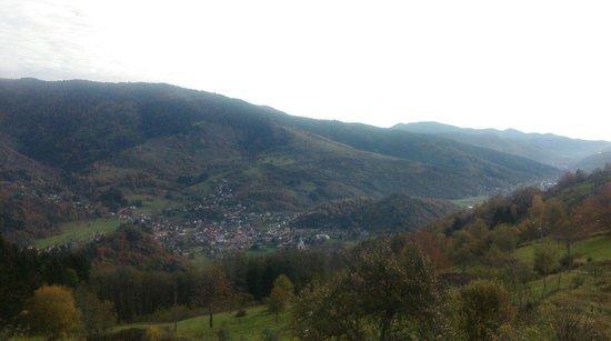 Ferme du Bergenbach: La vue sur la vallée