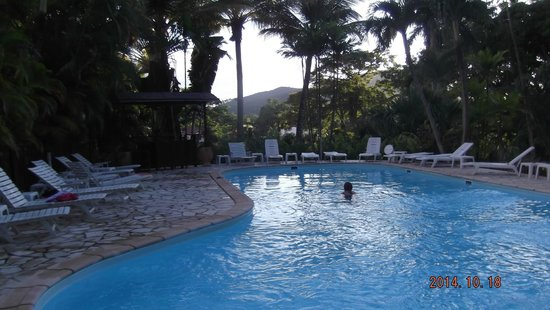 Habitation Grande Anse : La piscine