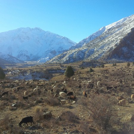 Zeravshan Valley, Tayikistán: village view