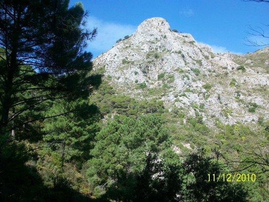 Ojen, Spain: Refugio de Juanar