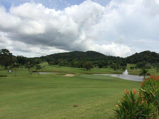 Radisson Summit Hotel And Golf: el campo
