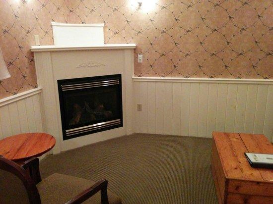 Moffat Inn: Room 133 basement fireplace