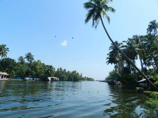 Alleppey Backwaters : Alleppey backwater