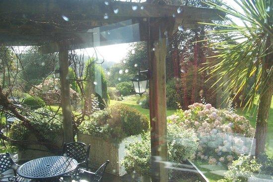 Horn of Plenty: Front garden