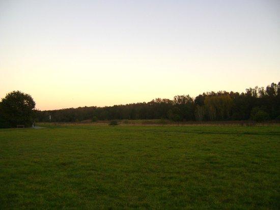 Unterbacher See