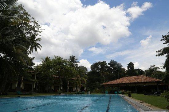 Talalla Retreat: the pool