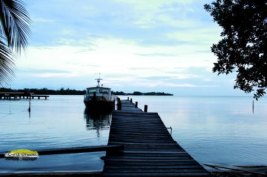 Casa Placencia Belize: Placencia Harbor in the evening