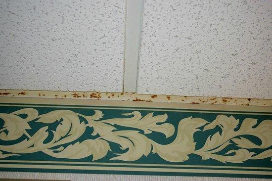 Quality Inn Alpine Helen: Rusted ceiling framework