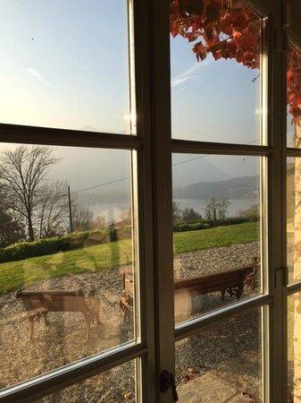 Le Maddalene Bed and Breakfast: Vista dal salotto comone