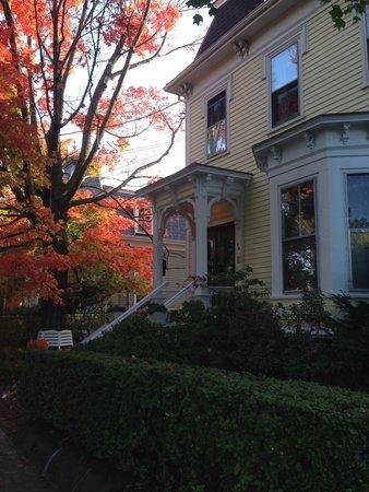 Parkside on Ellery: Ahornbaum vor dem Haus