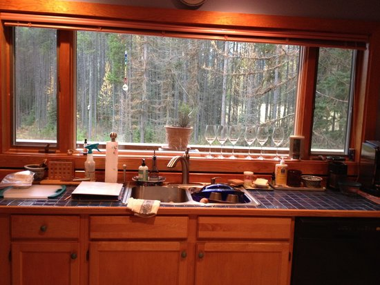 Moss Mountain Inn: Kitchen and view out back