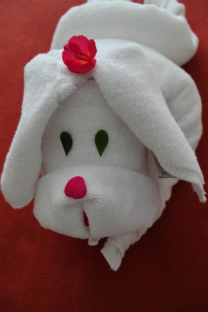 Eco Inn Puno Titicaca Lake: Cute towel animal wearing flowers from hotel garden