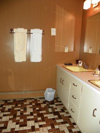 Journey Inn Bed & Breakfast: Bsthroom for Roosevelt Room