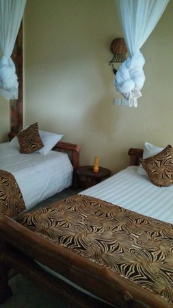 Silverback Lodge : Comfortable and clean room