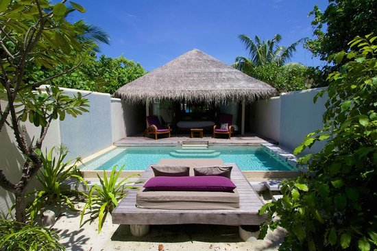 Island Villa Rear Pool Picture Of Coco Bodu Hithi Bodu Hithi