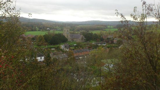 Montgomery Castle: View over Montgomery town