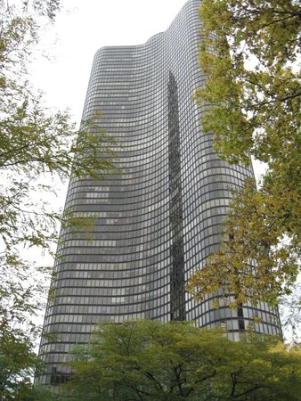 Lake Point Tower: Tower between the woodland trees