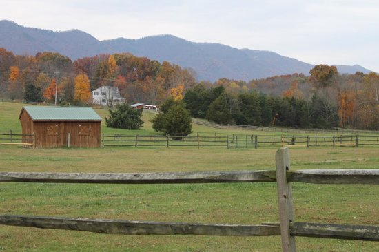 Fox Hill Bed & Breakfast Suites: Fall Foliage