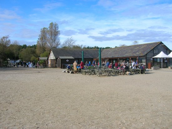 Studland beach and Nature Reserve : The National Trust information centre, cafe and shop