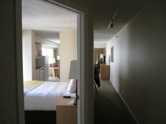 Comfort Suites Michigan Avenue / Loop : entrance