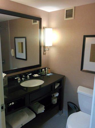 The Saratoga Hilton: Standard Room - Bathroom