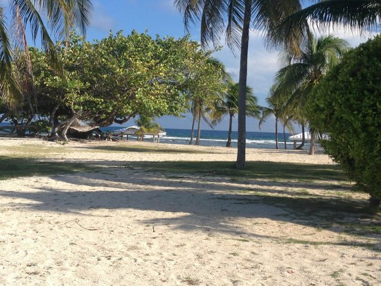 Cayman Brac Beach Resort: The view from the rooms and bar