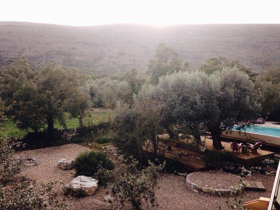 Cooking and Nature - Emotional Hotel: Vista do quarto