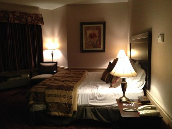 Cocca's Inns & Suites Albany Airport: Guest room with one king bed