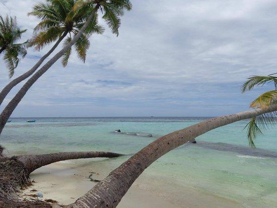 Stingray Beach Inn: Beach