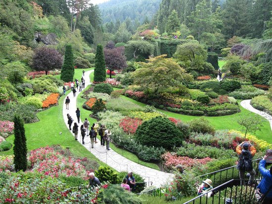 Japanese Garden Picture Of The Butchart Gardens Central Saanich Tripadvisor