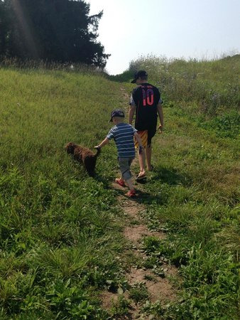 Bronte Creek Provincial Park: Walking through the fields on the off-leash dog-walk