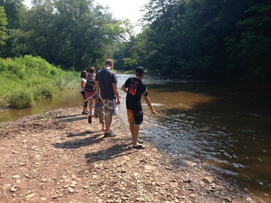 Bronte Creek Provincial Park: Throwing sticks by the river on the Bronte campground side