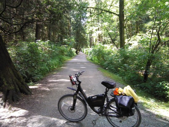 Port Coquitlam, Kanada: The trail beside Hyde Creek