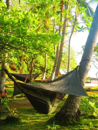 bahia rica fishing and kayak lodge  this is one of their awesome hammocks  so this is one of their awesome hammocks  so easy to put up and      rh   tripadvisor