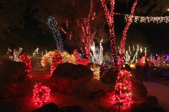 Christmas Lights In The Cactus Garden Of Ethel M Candies Picture Of Ethel M Chocolates