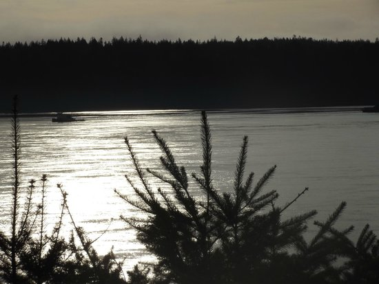 Above Tide Motel: Beautiful evening view from balcony of room