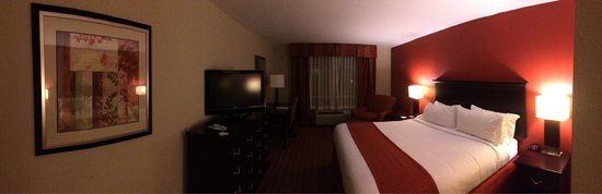 Holiday Inn Hotel & Suites Orange Park : King bed panoramic