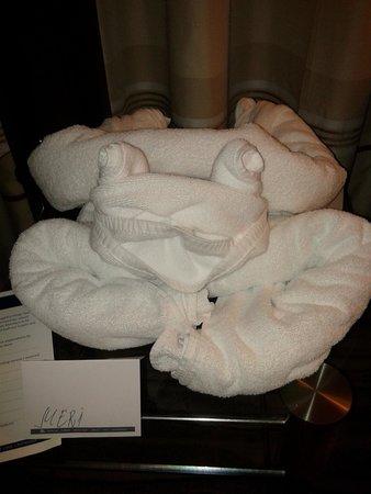 Hilton Sofia: scultura di spugna