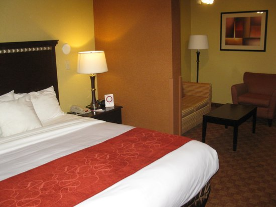 Comfort Suites Airport Phoenix: Nice Rooms