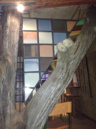 Colobus Cottages: nice touches