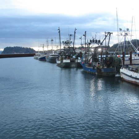 Comfort Suites Columbia River : The fishing fleet within walking distance.