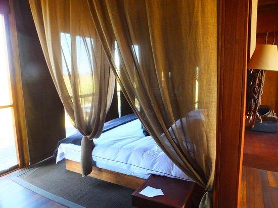 andBeyond Xudum Okavango Delta Lodge : Room - looking out over the bush