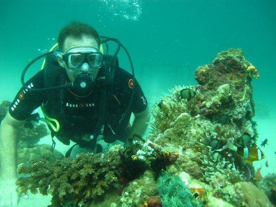 Scandi Divers: Richard gets neutral!